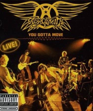 Aerosmith - You Gotta Move ( DVD )