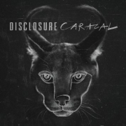 Disclosure - Caracal (CD)