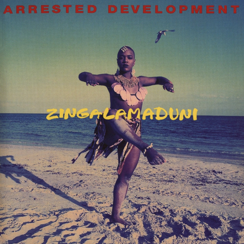 Arrested Development - Zingalamaduni (CD)
