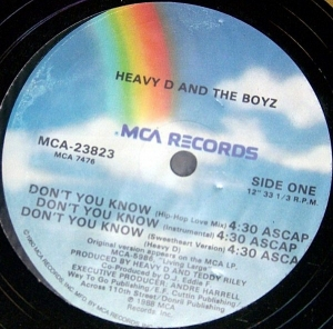 LP Heavy D And The Boyz - Dont You Know / Moneyearnin Mount VINYL (SEMI NOVO)