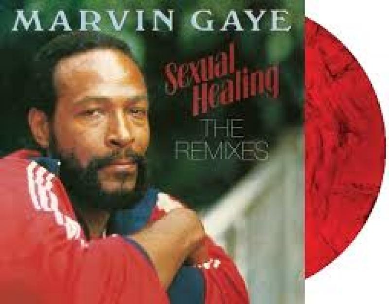 Marvin gaye sexual healing reggae mix