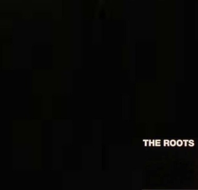 The Roots - Organix (CD)