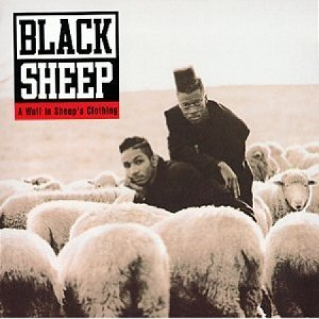 Black Sheep  - Wolf in Sheeps Clothing