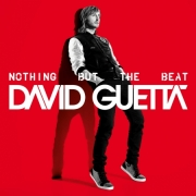 LP David Guetta - Nothing But the Beat VINYL DUPLO
